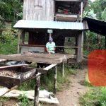 Ríos de Agua Viva apuesta por mejorar los sistemas productivos en rubro café